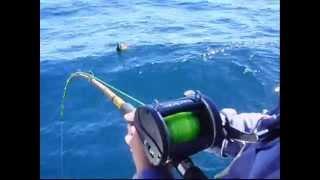 Pesca Infernal de salmones-meros Embarcado en mar del plata. todosdepesca.wmv