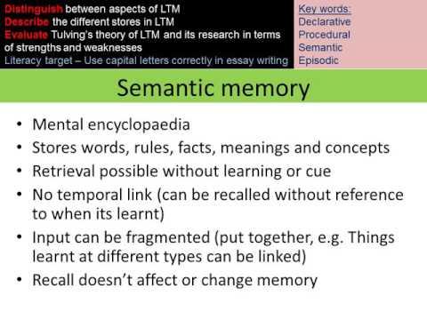 Cognitive psychology   Semantic long term memory