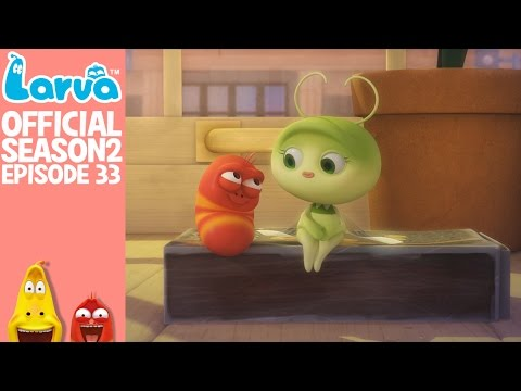 [Official] Mayfly 1 - Larva Season 2 Episode 33