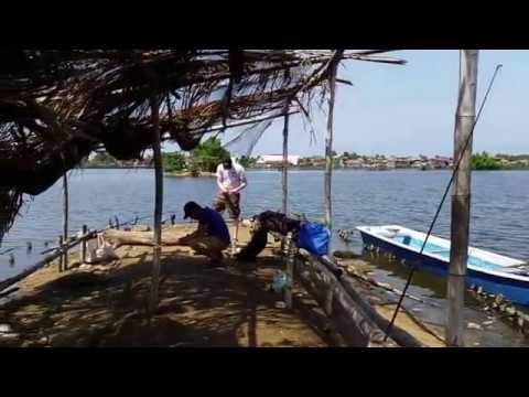 Fishing in the Philippines with Chase & Rannie