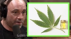 Joe Rogan - Effects of High Potency Marijuana, CBD | JRE Pot Debate
