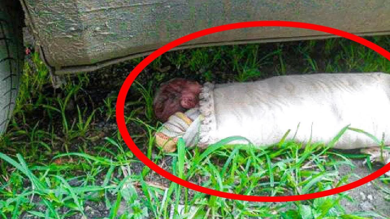 Muž našel miminko pod svým autem, ale pak se stalo něco, co všechny šokovalo...