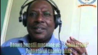 SHANKAROON HAWEENKAAY - MAXAMED CUMAR DALXA