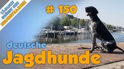 TGH 150 deutsche Jagdhunderassen - Hundeschule Stadtfelle
