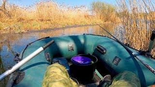 Сказочная Рыбалка на Деликатную Поплавочную Оснастку с лодки в камыше!