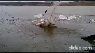 Рыбалка на сети по последнему льду в марте Лещ и подлещики