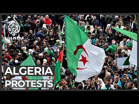 Algeria protests: One year since anti-gov't rallies began