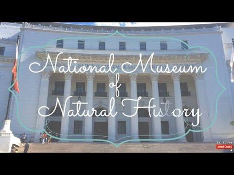 Bisitahin natin ang National Museum of Natural History (Manila, Philippines) | MUSEUM HOPPING