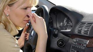 Запах в салоне автомобиля. Как избавиться от запаха?