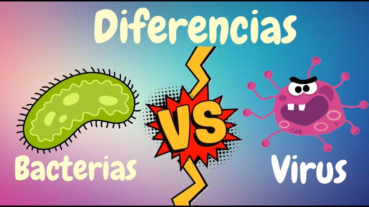 Download Principales Diferencias entre Virus y Bacterias
