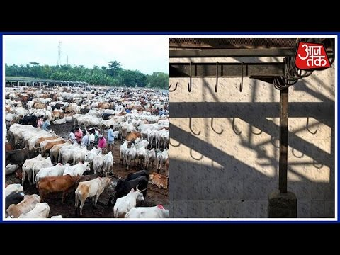 India 360: Illegal Slaughterhouses Shut In Allahabad As Per BJP's Promise Before Polls