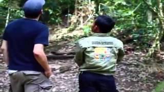 sumatran-orangutan-society_training-orangutan-etiquette-feedback.mp4