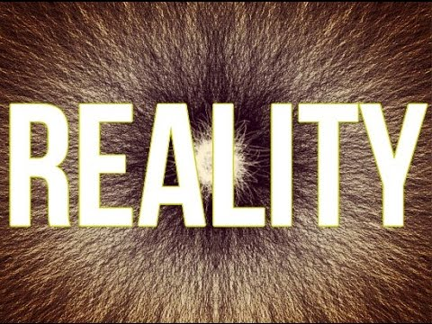 Your Reality Is Created From Thoughts And Beliefs! (Law Of Attraction)