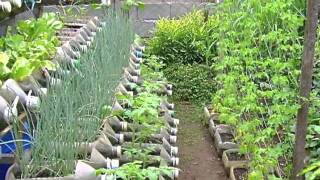 Risers in container gardening