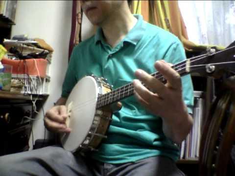 Vega Little Wonder small pot tenor banjo