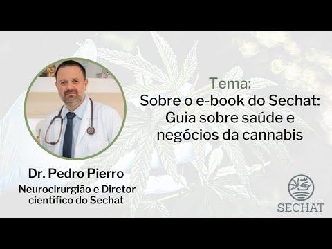 Sobre o e-book do Sechat: Guia sobre saúde e negócios da cannabis