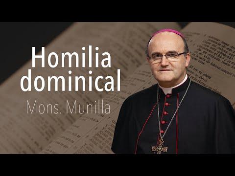 homilía-13-09-2020-mons.-munilla-domingo-24º-del-t.o-ciclo-a
