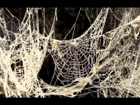 Epoxy Ft. Trubble- Spiderwebs (Lurk)