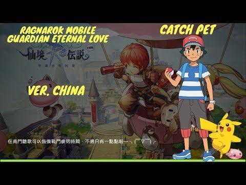 Ragnarok Mobile: Guardian Of Eternal Love (CN) How To Catch A Pet
