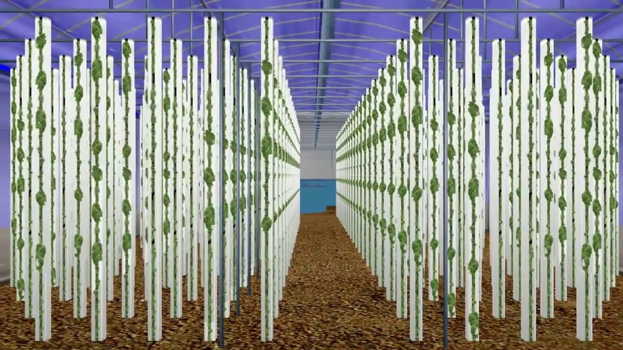 Design Vertical Aquaponics Systems Youtube