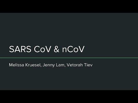 Virus at the Edge - SARS-CoV and nCoV