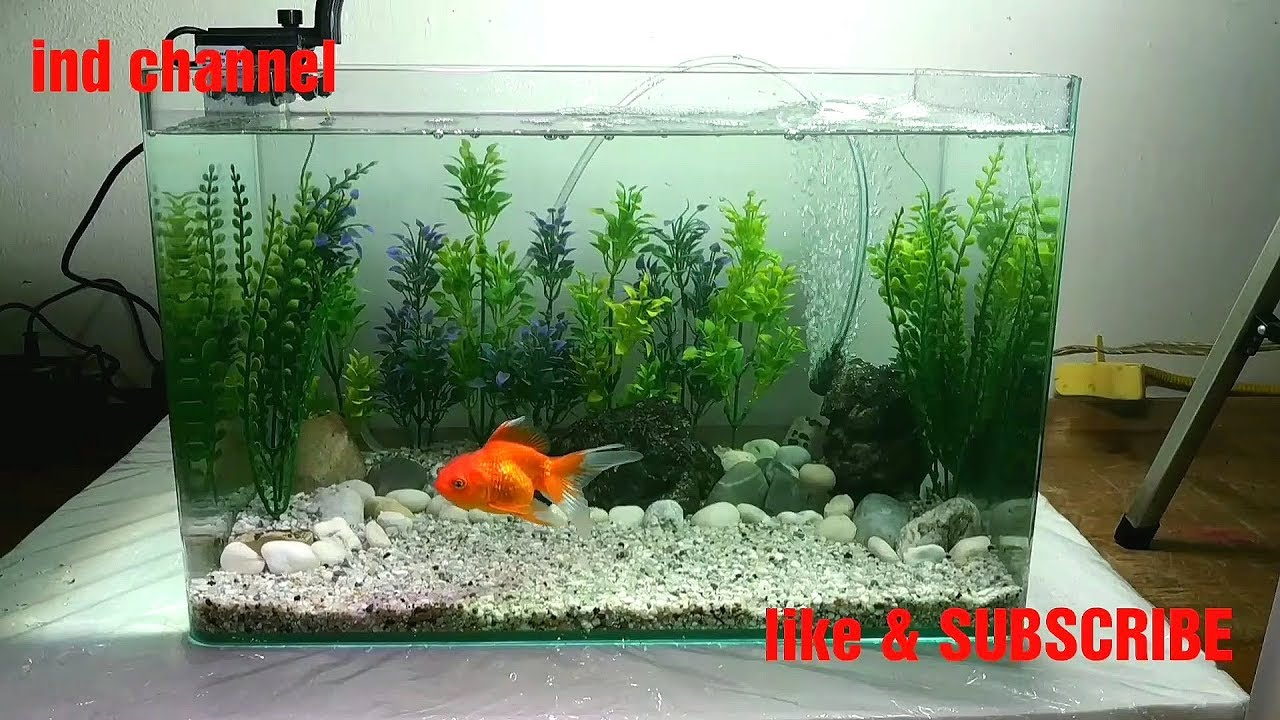How To Make Simple Design For Small Aquarium Cara Simple Desain Aquarium Kecil Youtube