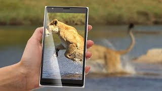 Latest Android Phones | Microsoft Lumia 1330 | Review | Phone Specifications | New Phones