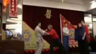 Wing Chun Kung Fu Force Generation (AWESOME!)