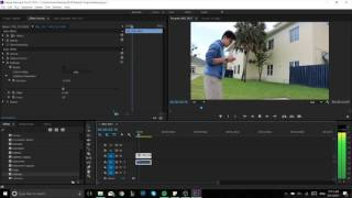 HOW TO REDUCE WIND NOISES IN PREMIERE PRO QUICKLY!