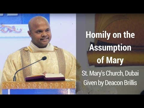 Homily on the Assumption of Mary