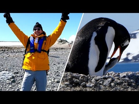 Antarctica - Stepping foot on my 7th continent
