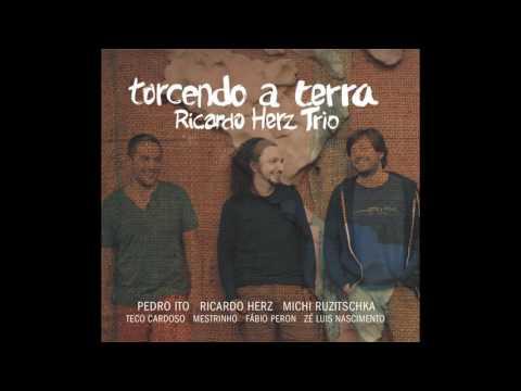 Ricardo Herz Trio - torcendo a terra  (album completo - full album)