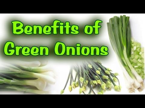 हरे प्याज की यह 6 फायदे के बारेमें जानेंगे तो हैरान हो जायेंगे आप – Health Benefits of Green onion