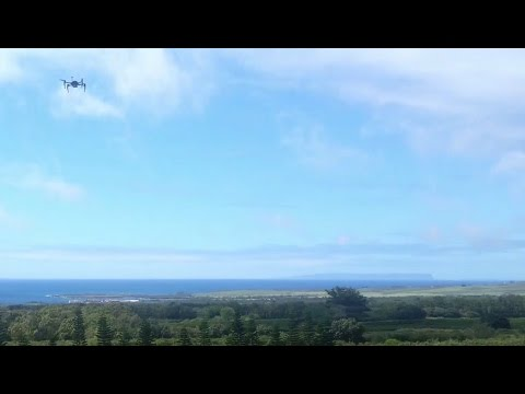 Drones are the Future of Farming - Growing Kauai Coffee with UAS