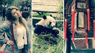 Baby Panda Selfies ?! | Chengdu 72 Hour Challenge | Chengdu,China