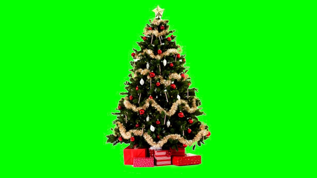 Christmas Tree 1 Green Screen