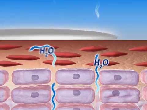 Eczema cream animation