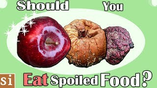 Why Can We Eat Some Spoiled Food But Not Others?