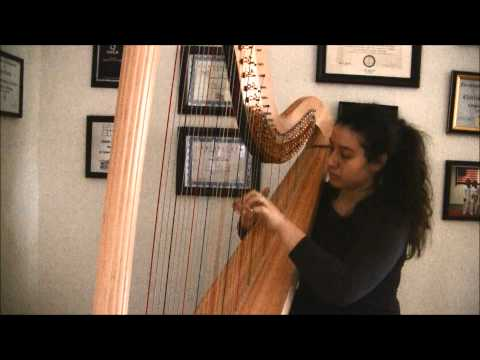 Pop/Rock Medley by Analee Cantu on Harp | Ed Sheeran, Maroon 5, Imagine Dragons, Avicii, and more!