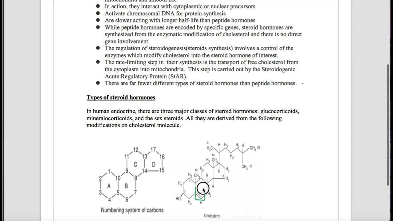 Biochemistry of Steroid Hormone