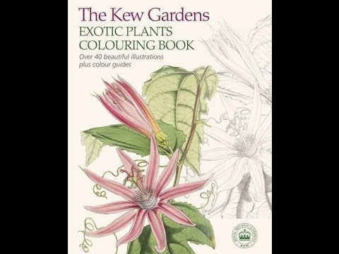 Flip Through The Kew Gardens Exotic Plants Coloring Book