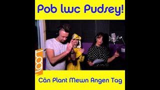 🐻 Cân Plant Mewn Angen Tag 2017!