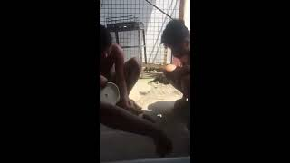 بالفيديو.. شاب ينقذ كلبا من الموت عن طريق تنفس صناعي