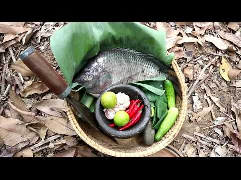 Survival skills: Big fish grilled on clay for food – Cooking big fish eating delicious