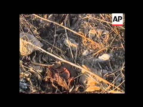 LEBANON: ISRAEL CONFIRMS 11 SOLDIERS WERE KILLED IN COMMANDO RAID