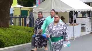 2015年9月13日(日)、平成27年9月場所初日に行ってきました! 十両、幕内...