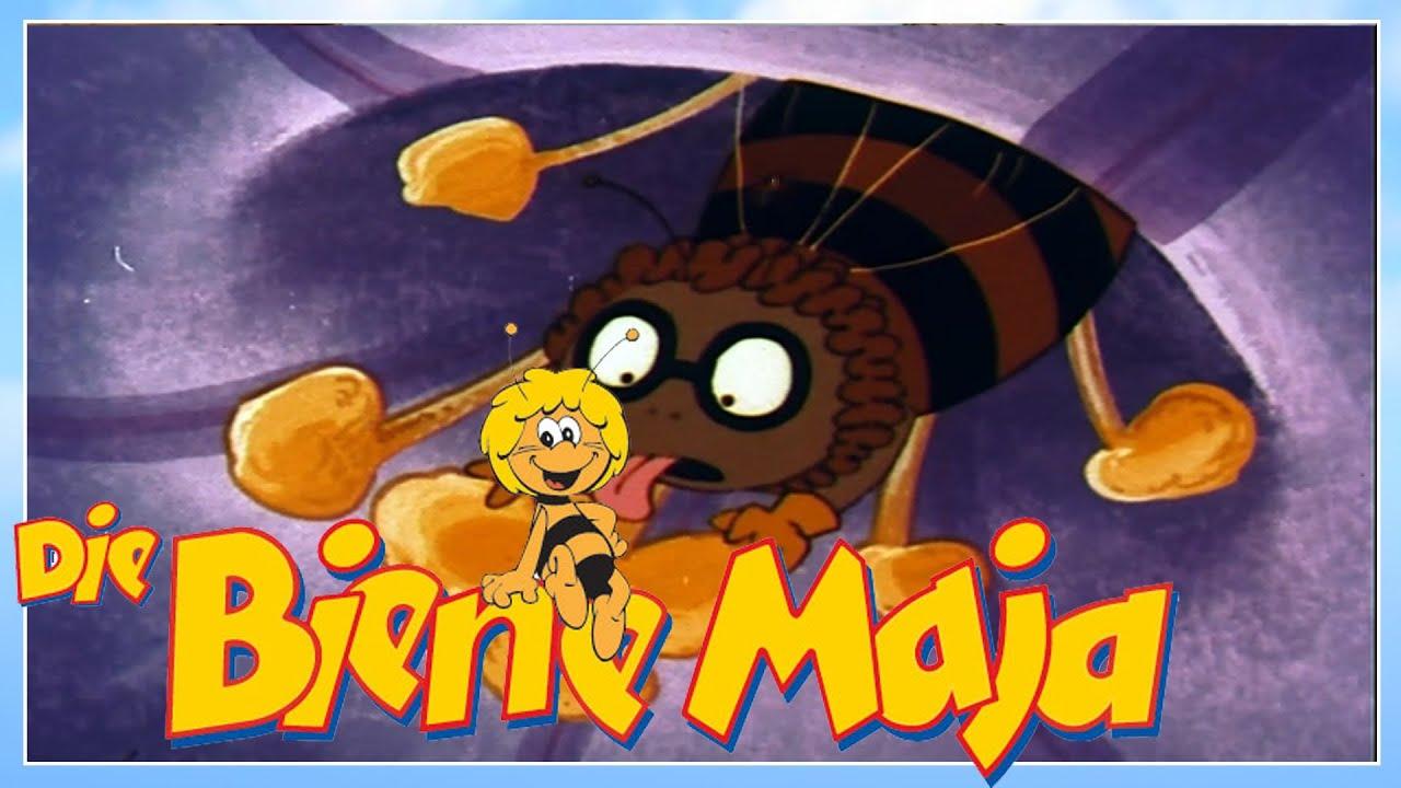 Spinne Bei Biene Maja