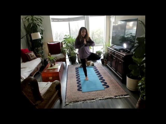 Yoga for Stilling the Mind