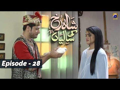 Download Shahrukh Ki Saaliyan - EP 28    English Subtitles    - 8th Dec 2019 - HAR PAL GEO