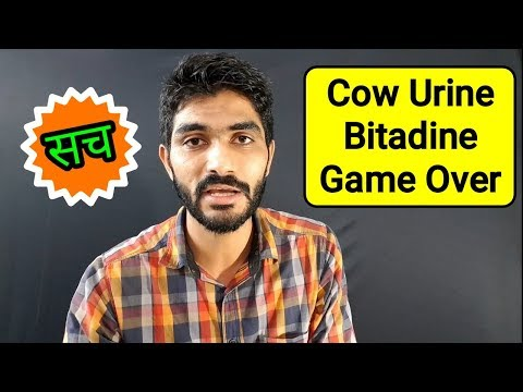 Cow Urine Magic ! Reply to dhruv rathee on gaumutra | Thanks Bharat